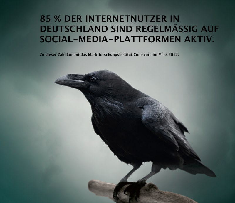 85 % DER INTERNETNUTZER IN DEUTSCHLAND SIND REGELMÄSSIG AUF SOCIAL-MEDIA-PLATTFORMEN AKTIV.