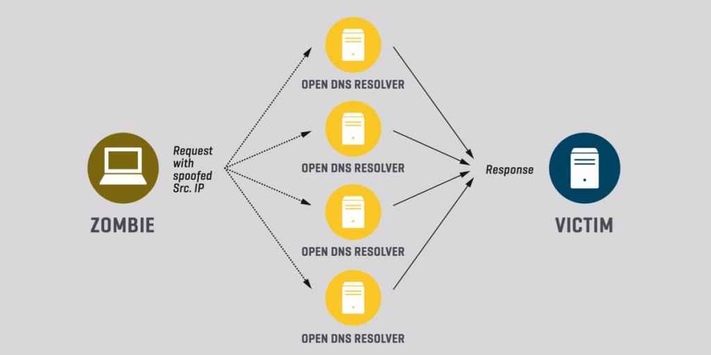 Infografik Angriff auf DNS