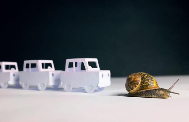 Verkehrs chaos durch DoS-Angriffe
